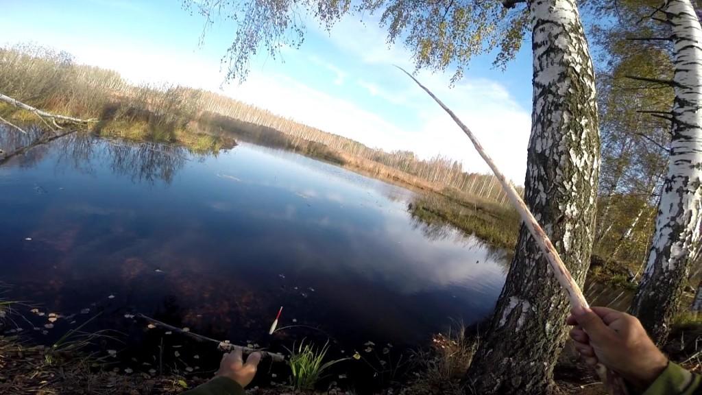 удочка из можжевельника на рыбалке фото