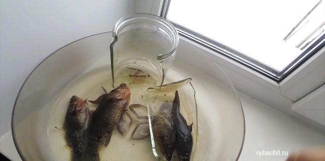 Рыба после разморозки.