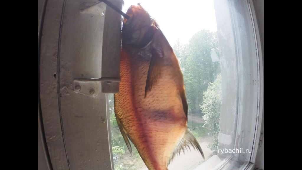 вяленая рыба сушка
