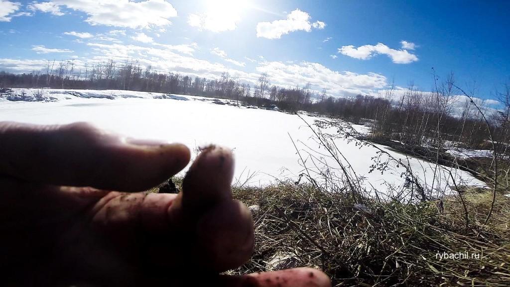 наживка для зимней рыбалки на плотву