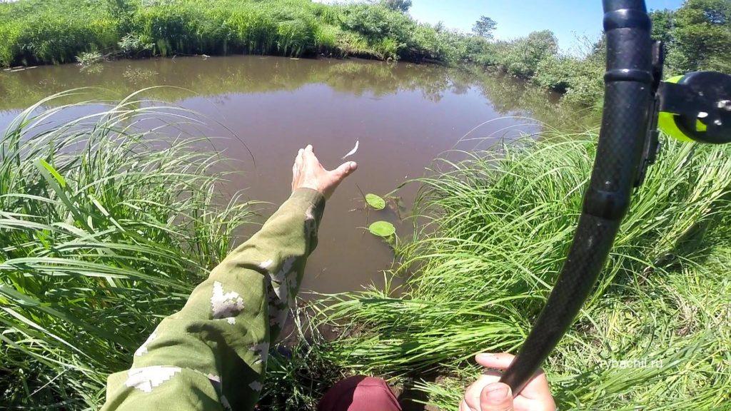 Ловля рыбы на быстрой реке видео